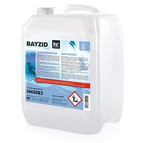 Höfer Chemie 5 L Pool Algenvernichter - Anti Algenmittel für Schwimmbad & Pool - schnelle Wirkung bei Algen