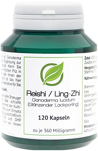 Reishi/Ling-Zhi (Ganoderma lucidum) - 120 Reishi-Kapseln in Aromaschutzdose