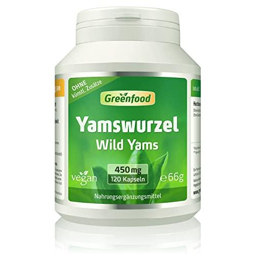 Yamswurzel (Wild Yams), 450 mg, hochdosierter Extrakt (mind. 20{2312141eb2ad0713a91274934599e406eedb5c3c38977f91c9347ec38477750b} Diosgenin), 120 Kapseln, vegan - OHNE künstliche Zusätze. Ohne Gentechnik. Vegi-Kapseln.