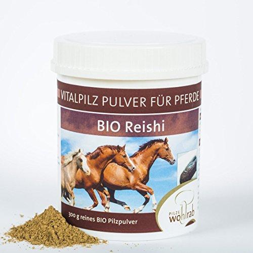 Reishi Vitalpilz Pulver Bio für Pferde 300g