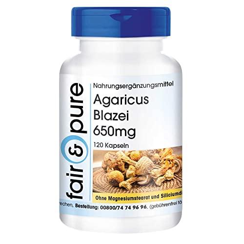 Agaricus Blazei Murrill 650mg (ABM - Agaricus Blazei Murill) - Vitalpilz - vegan - natürlich - ohne Magnesiumstearat - 120 Kapseln