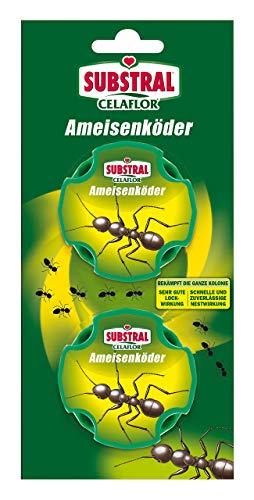 Celaflor Ameisen-Köder, Praktische Köderdose zur Bekämpfung von Ameisen\nim Haus und auf Terrassen mit schneller und zuverlässiger Nestwirkung, 2 Dosen