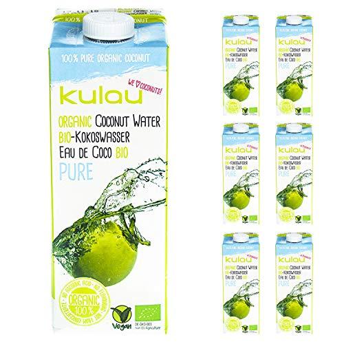 KULAU Bio-Kokoswasser PURE 1 Liter - 100{d19eefb50f7a132072ec68508ba4bbb5f8b919d1b7c57c39948615e002819fde} pures Kokosnusswasser aus der Kokosnuss, 12er Pack (12 x 1 L)