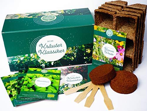 Kräuter Anzuchtset - Kräuter Pflanzset mit 4 Sorten Bio Kräuter Samen, perfektes Gechenk Set zu jedem Anlass, verpackt als Geschenk Box, ideales Geschenk für Frauen und Männer