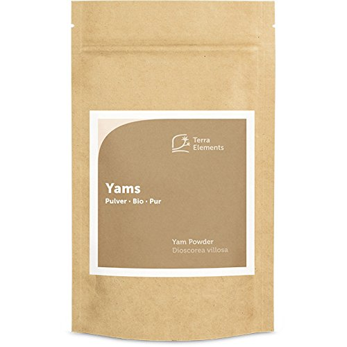 Terra Elements Bio Yams Pulver 100 g I Wilde Yamswurzel I 100{51b28eeddb83fa6adc1fd63f81dce9a2e5683bb5d1e7c87d2fa7ba9d957acdc0} rein I Vegan