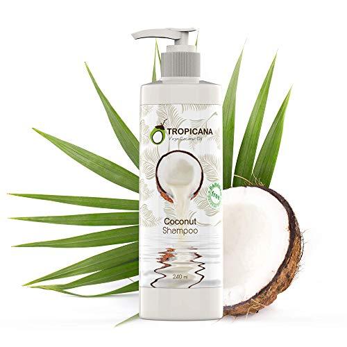 Tropicana Oil Kokos Shampoo mit Nativem Kaltgepresstem Bio Kokos Öl 240ml   Ginseng Extrakt & Nelkenöl   Vegan Natur Kosmetik Cocos Shampoo   Shampoo Kokos Pumpspender ohne Silikon, Sulfate & Parabene